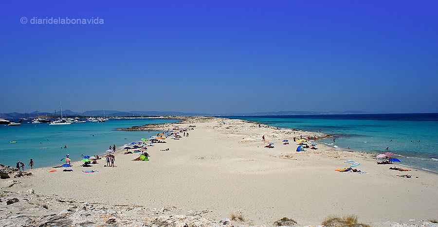 A l'esquerra, la platja Ses Illetes; a la dreta, la de Llevant