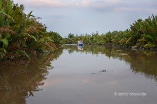 Navegant pel riu Seykonyer, a Borneo
