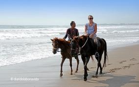 Passeig a cavall per les platges de Bali