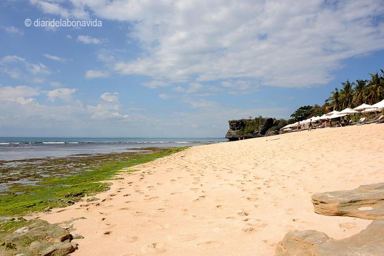 indonesia_2251