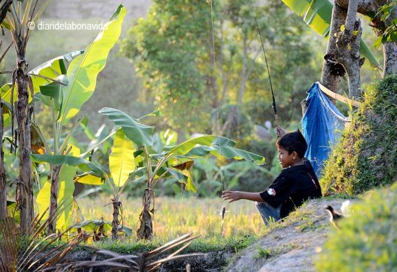 Un nen pescant en una petita bassa