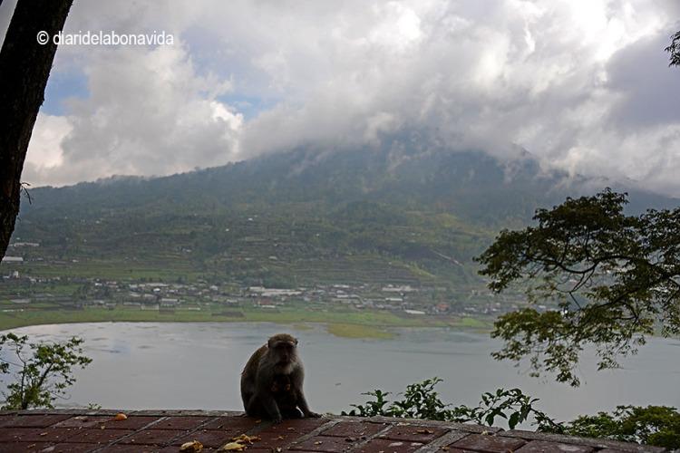 indonesia_3035