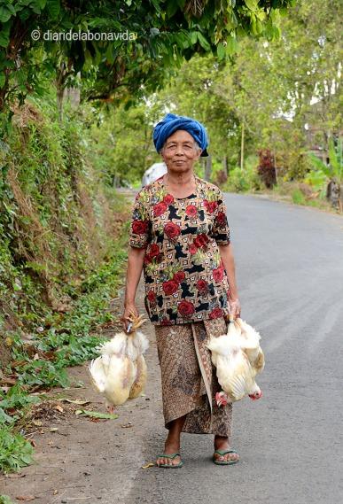 Trobem persones que ens saluden a tots els pobles. Li comprem un pollastre?