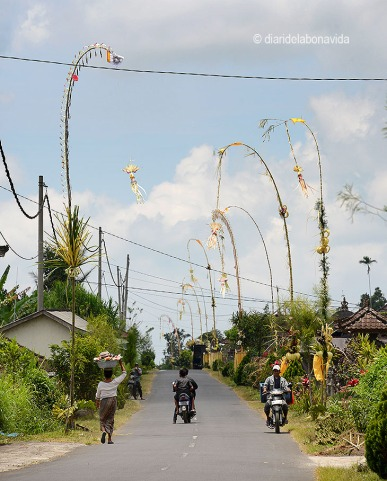indonesia_3238
