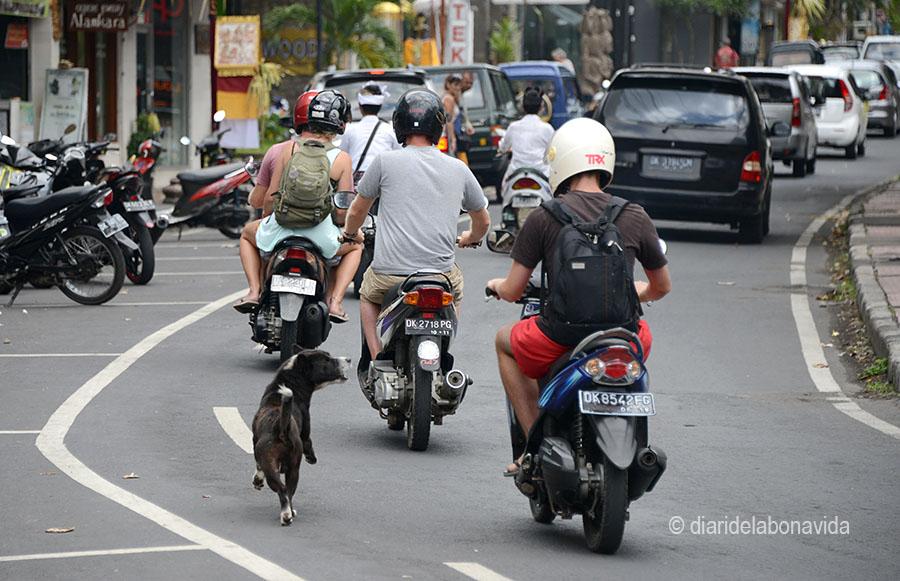 indonesia_3321