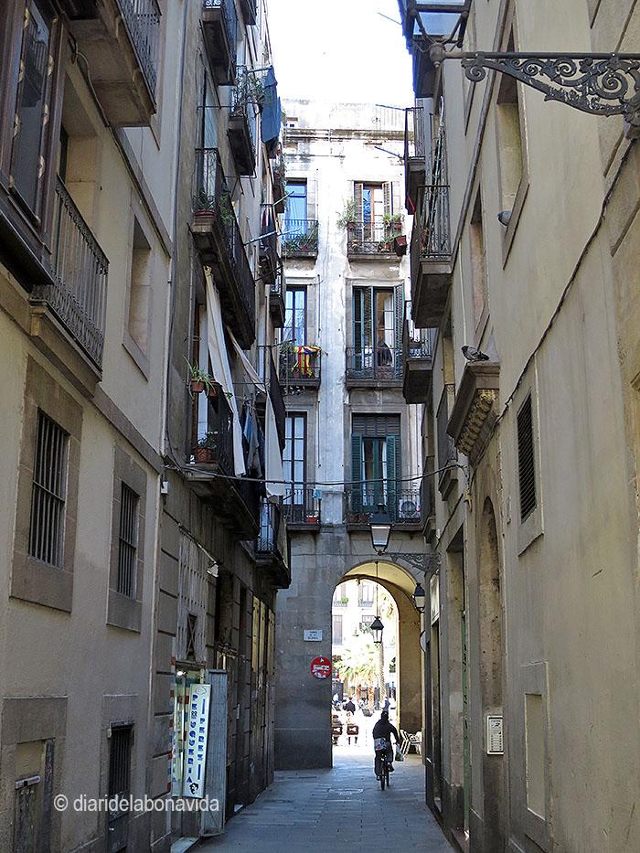 barcelona_042 vidre
