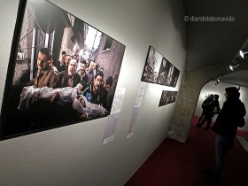 ...I admirem la gran exposició del World Press Photo