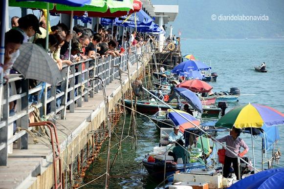 Al poble de Sai Kung trobem el mercat flotant del peix