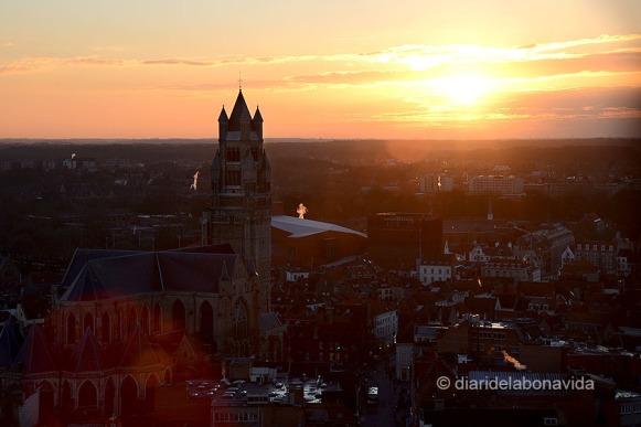 Des de Belfort podem observar la Catedral de Sant Salvador