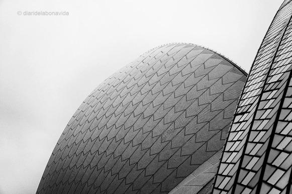 Sostre de l' Opera House. Sydney