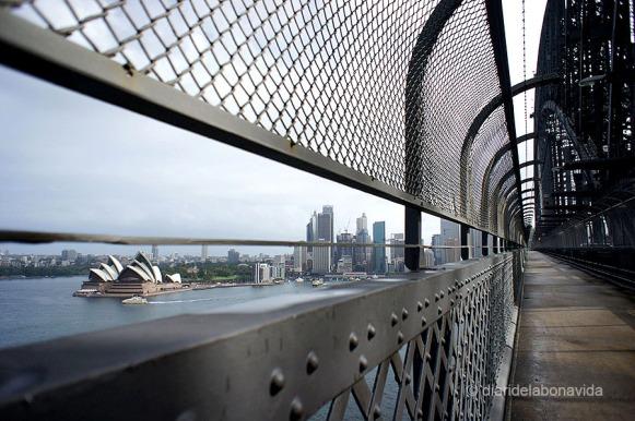Vistes des del Syndey Bridge
