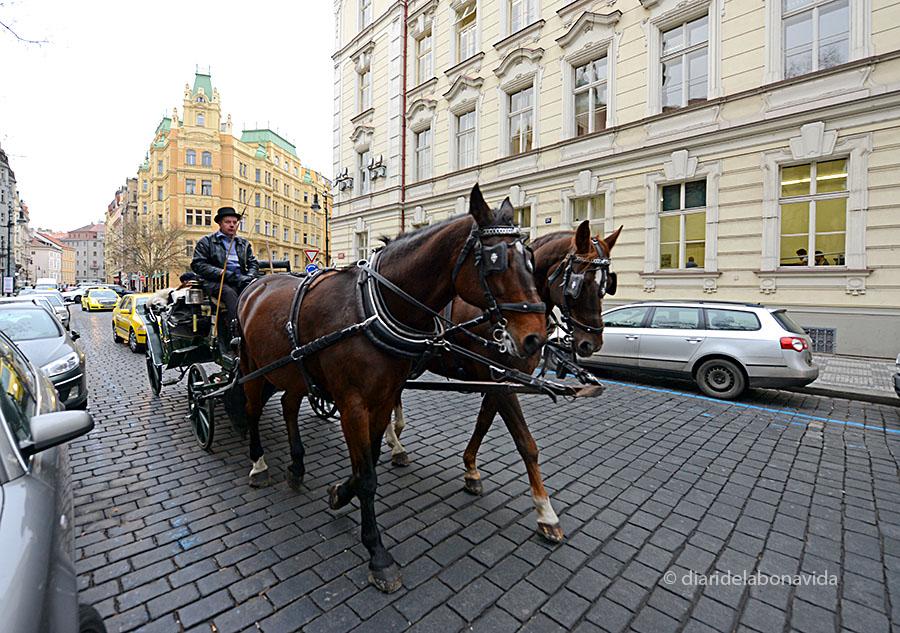 praga coche caballos