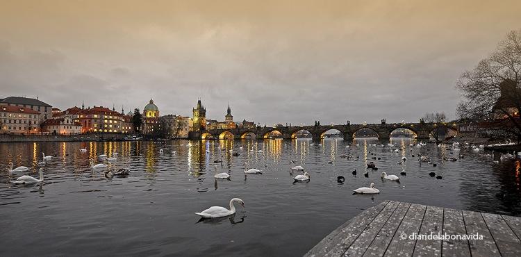 El riu Moldava travessa la ciutat