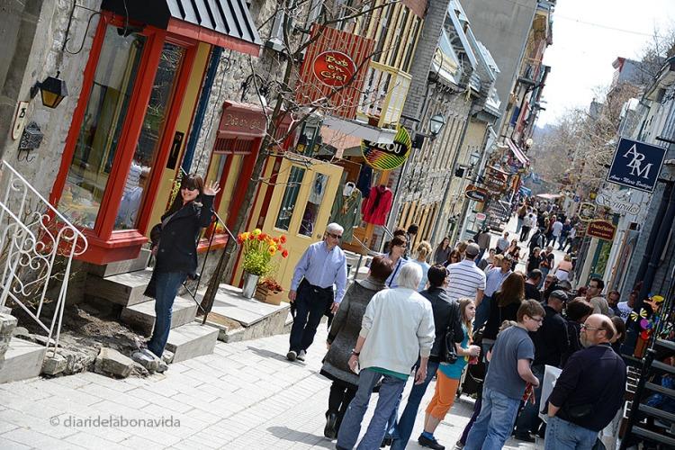 canada rue petit champlain quebec 1