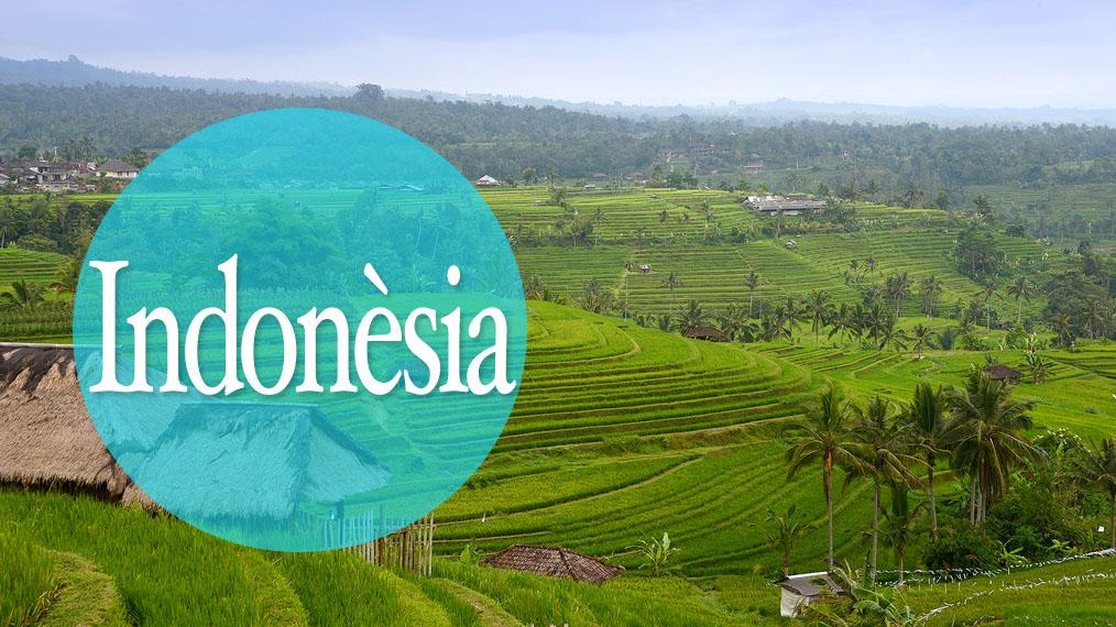 Ruta Indonèsia