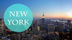 iconos ciudades newyork cat