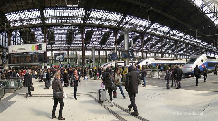 paris lyon station