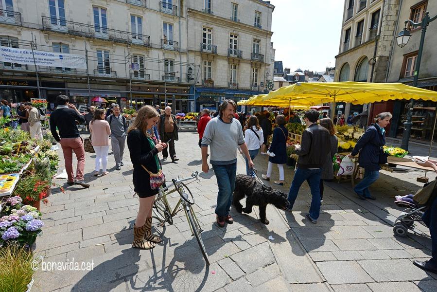 Marché des Lices, Rennes. Bretanya