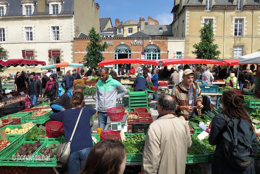 bretanya rennes mercat des lices