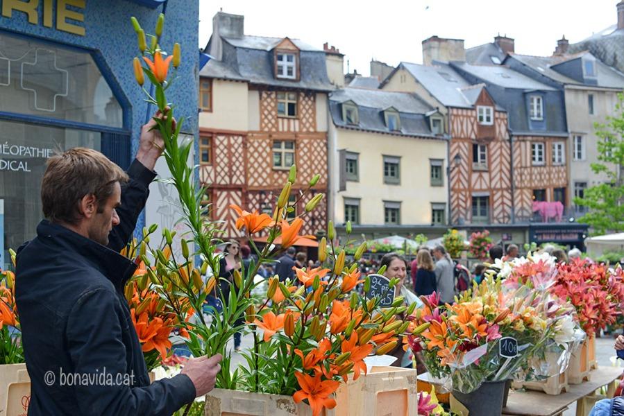 Flors i plantes ocupen un lloc important al Mercat