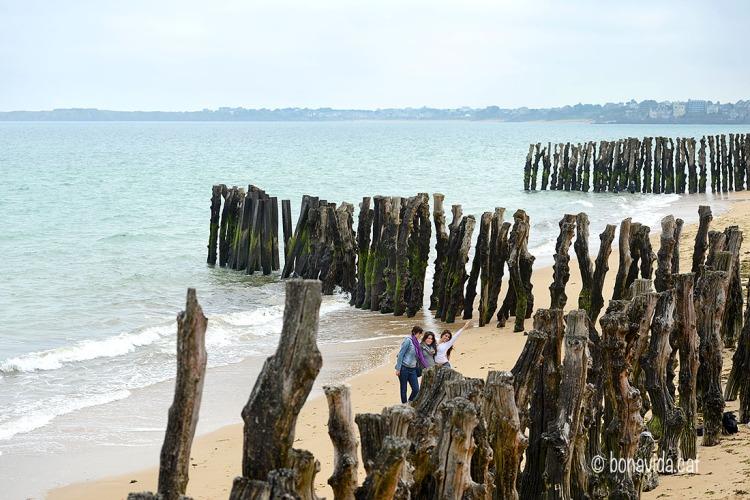 Una gran filera de troncs recorre la platja gran de Saint-Malo