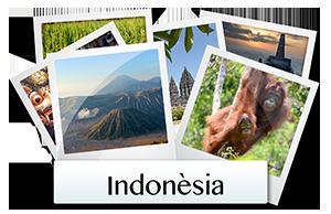 galeria fotos indonesia