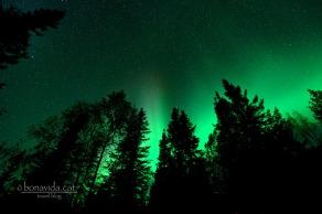 aurores boreals alaska 03