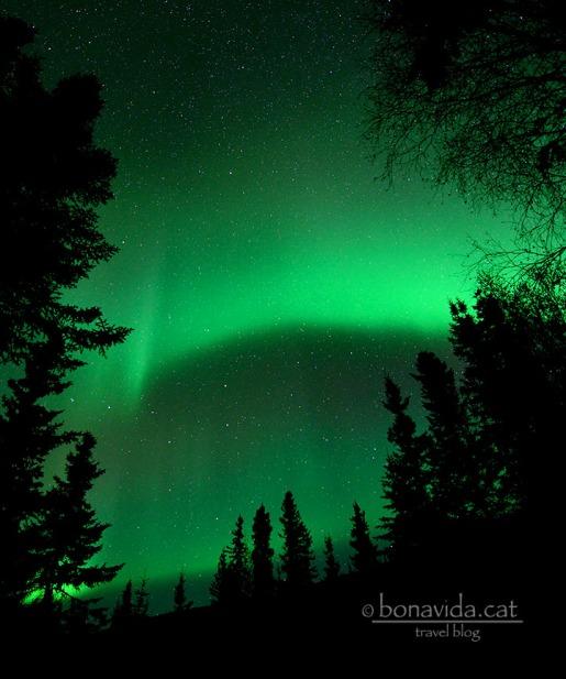 aurores boreals alaska 05