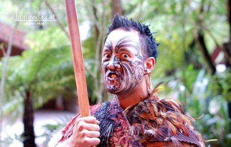 Maoris a Rotorua