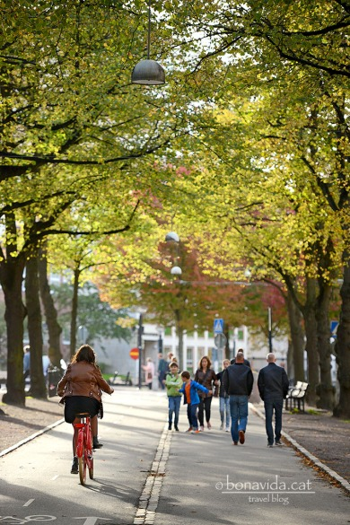 Vasagatan. Una verda avinguda...