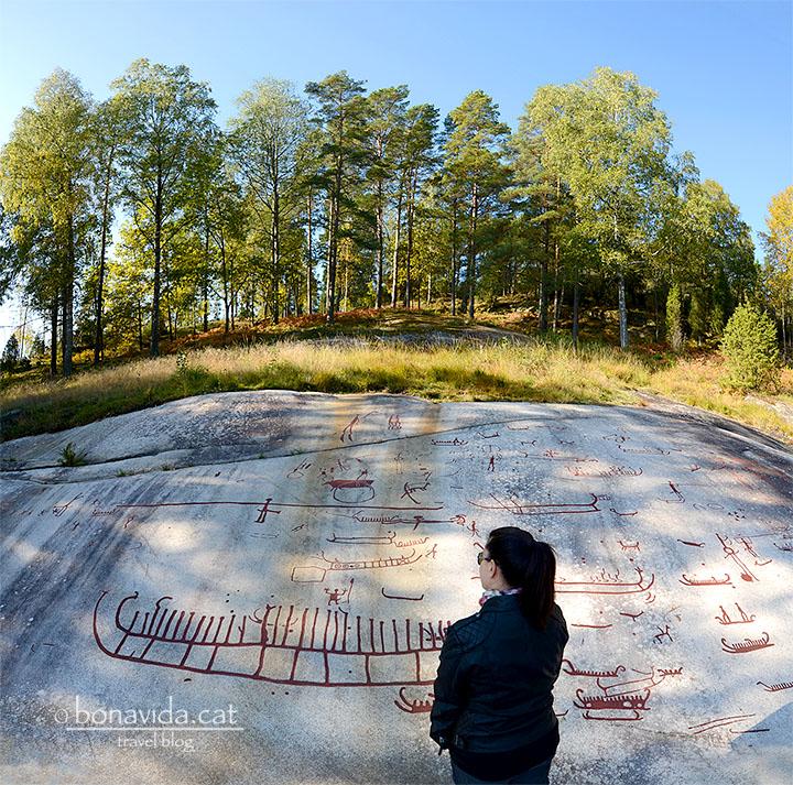Els gravats de Tanumshede es troben entre boscos