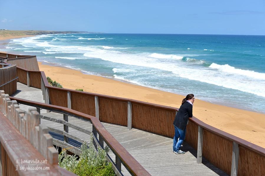 La platja de Logans Beach disposa d'uns obeservatoris i molta nformació sobre les balenes.