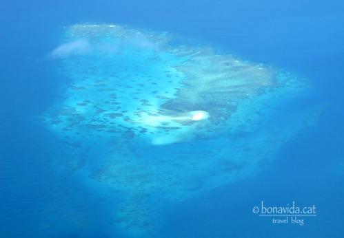 australia barrera corall