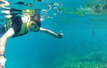 Practicant snorkel entre corall i peixos a la Gran Barrera de Corall