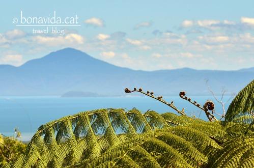 australia mount alexandra lookout 2