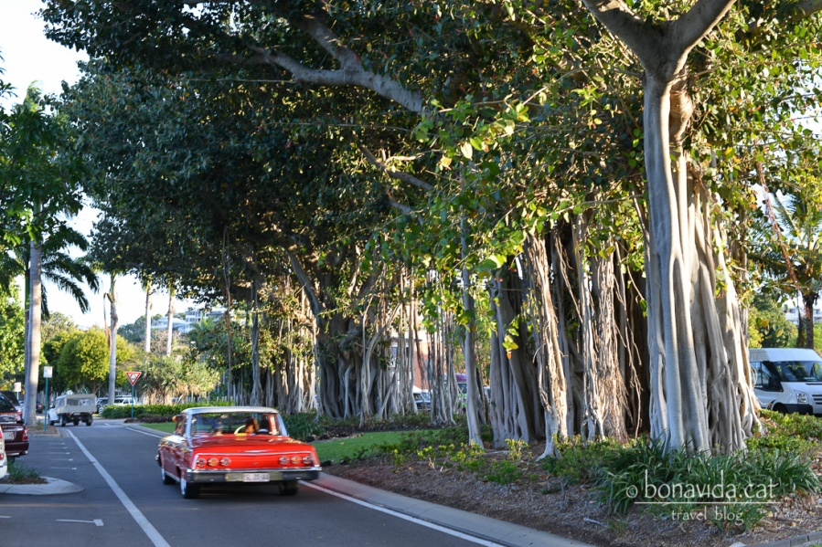 Carrer de Townsville