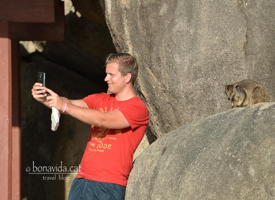 La moda dels selfies a fet molt de mal...