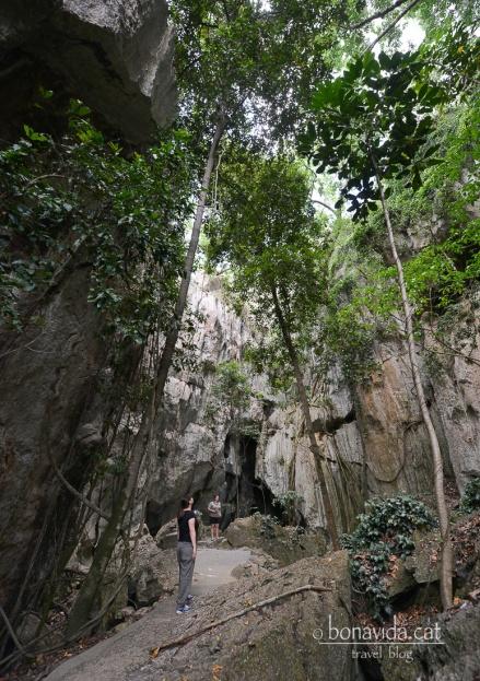 Entrem a les Capriconr Caves