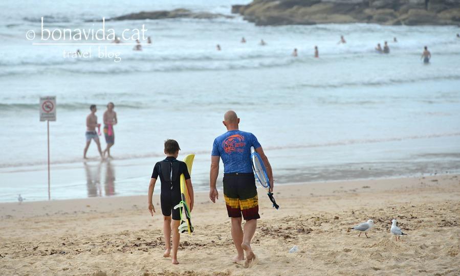 Tradició surfera