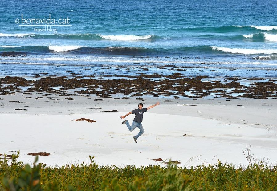 Fent el pallasso a Denison Beach