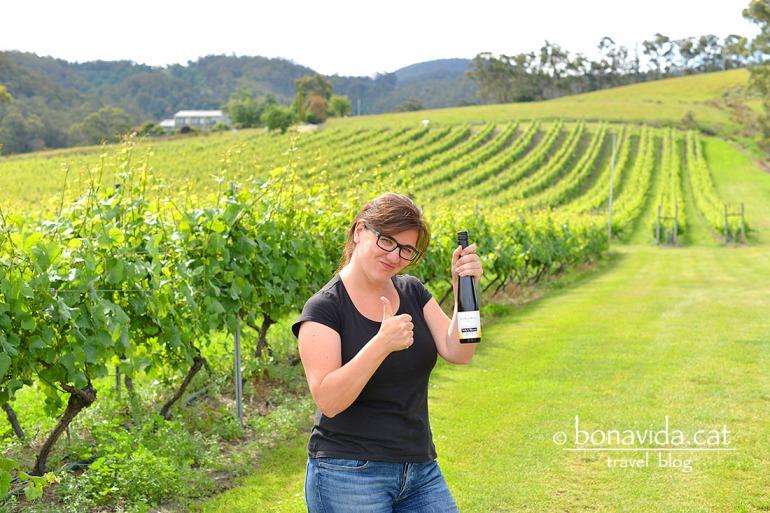 Visitem més winerys i comprem vi pels nostres sopars a la caravana