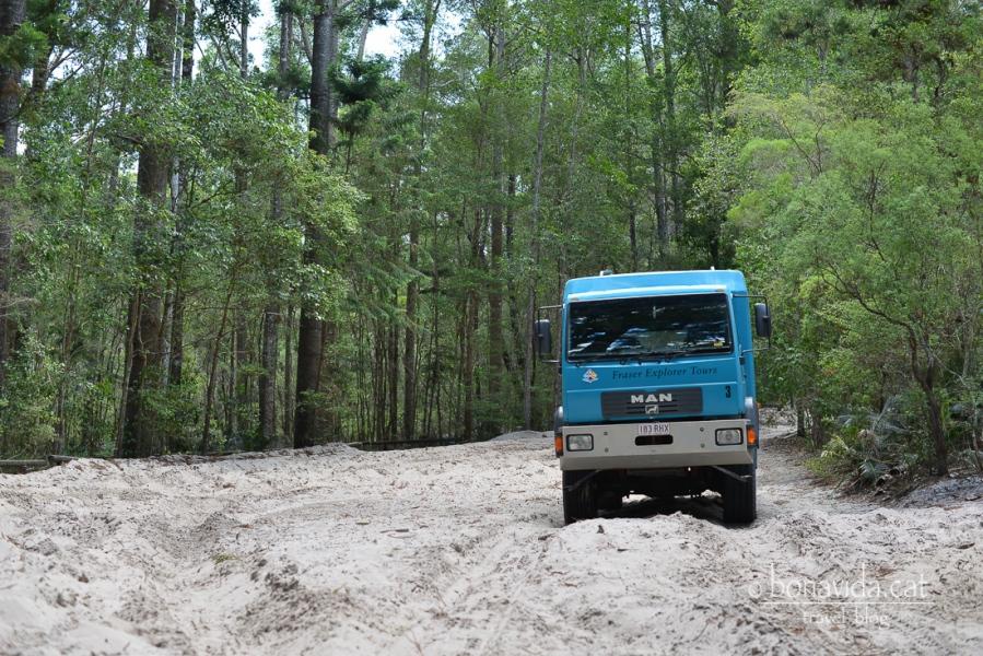 Un híbrid entre camió i bus 4x4 ens porta per l'illa