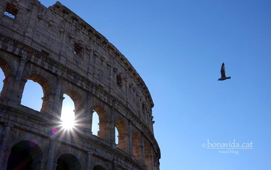 El Colosseo continua impressionant-nos