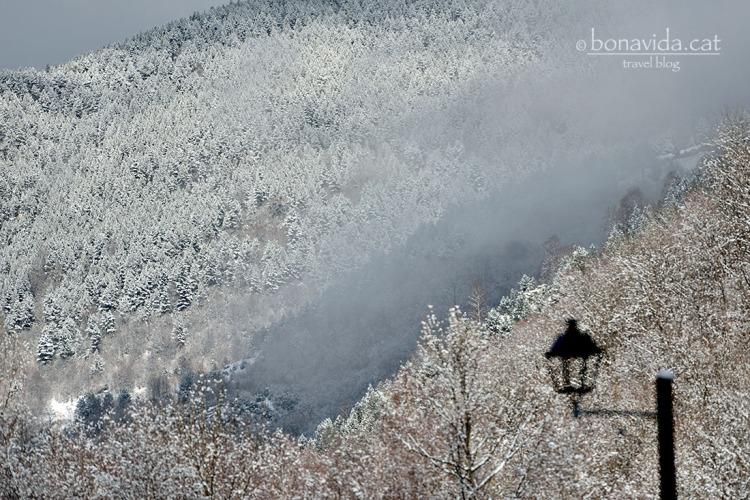 La boira potencia encara més la sensació de fred