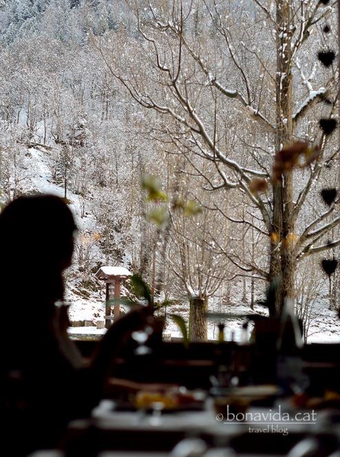 El restaurant té bones vistes a la muntanya