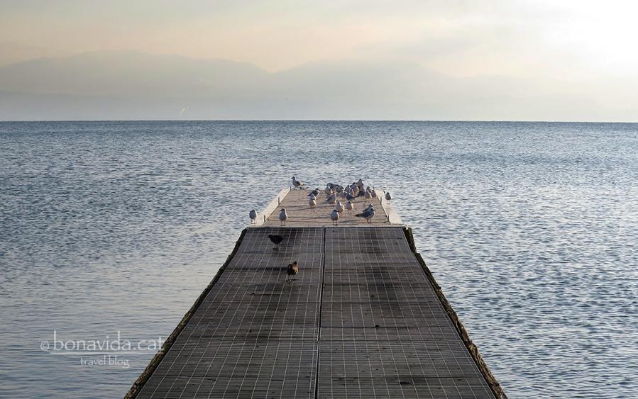 Ruta Lago Léman. Poble de Morges