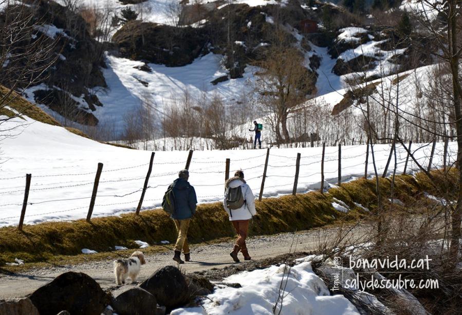 L'excursió coinideix en alguns trams amb la pista d'esquí nòrdic