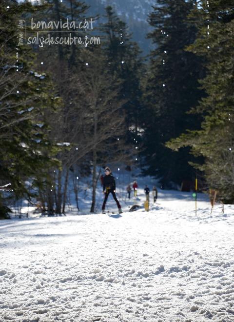 Estació d'esquí de Pont d'Espagne