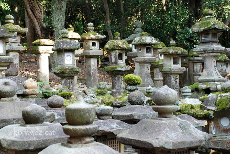 Farols de pedra al Santuari Kasuga Taisha, dins el recinte de Nara-Kõen.