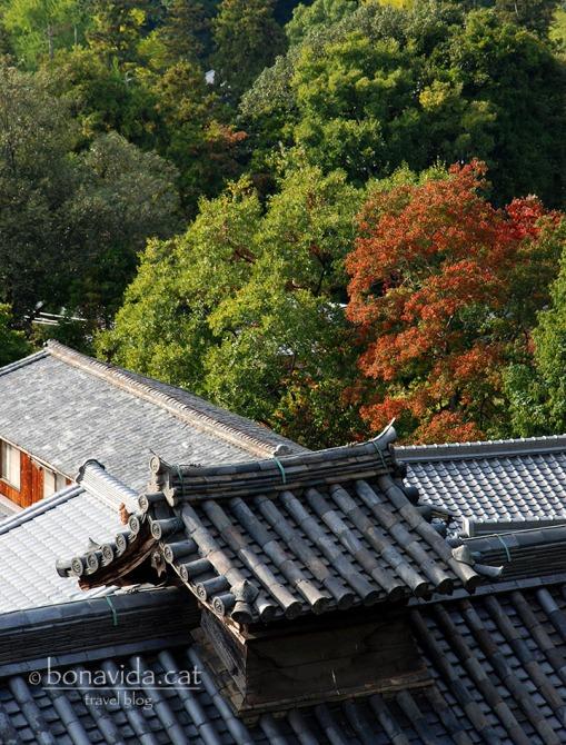 Dins el recinte del Parc Nara-Kõen, trobem la sala Nigatsu-dõ.